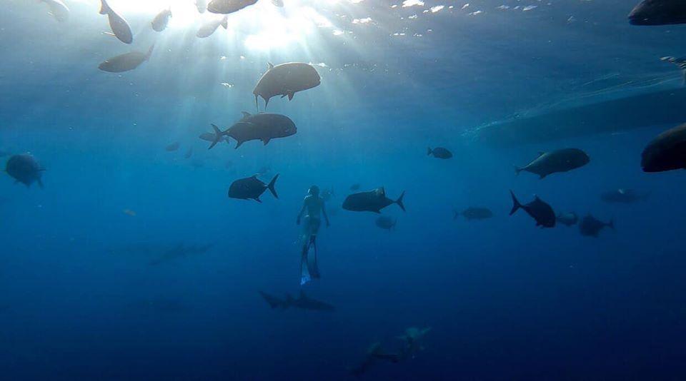 kinh nghiem du lich maldives tu tuc dulichchat 8