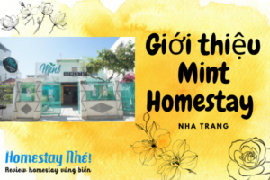 Gioi Thieu Lamer Homestay 21