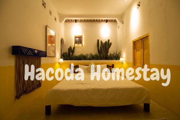 Phòng đơn của Hacoda Homestay