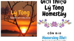Gioi Thieu Lamer Homestay 7