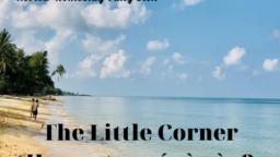 The Little Corner Homestay có gì nào?