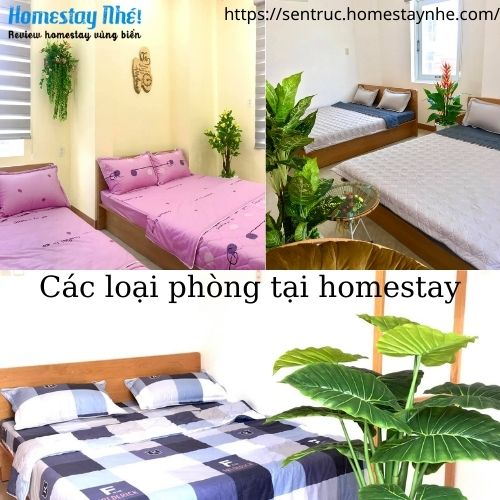 Các loại phòng tại homestay