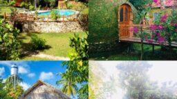 Giới thiệu Sen Lodge Bungalow Village